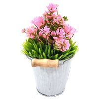 Imagen de Planta con flores, maceta de metal, varios colores