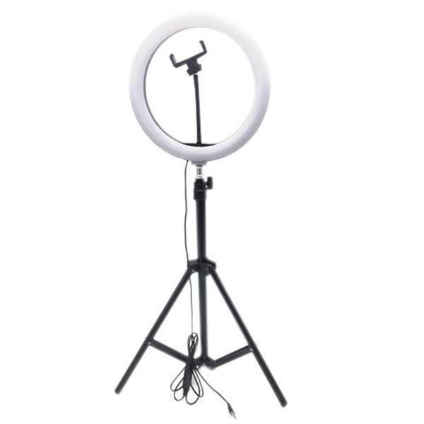 Imagen de Aro de luz LED, con trípode extensible, adaptador para celular o cámara, luz neutra, fría y cálida, en caja